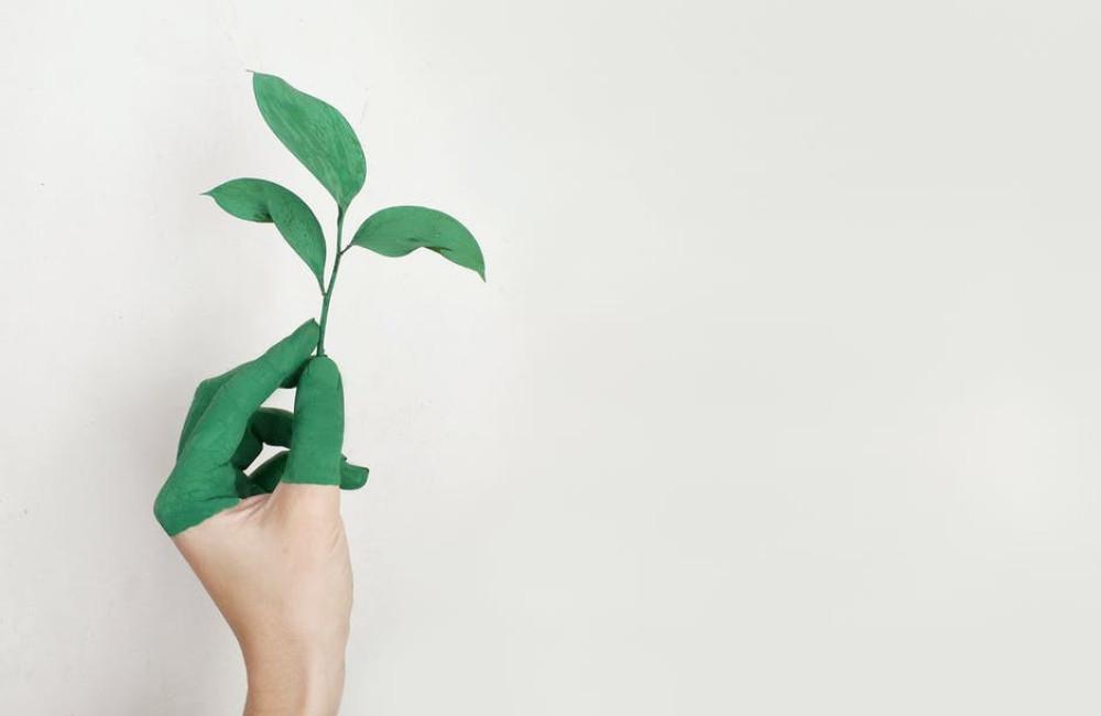 7 milieuvriendelijke en afvalvrije cadeau-ideeën